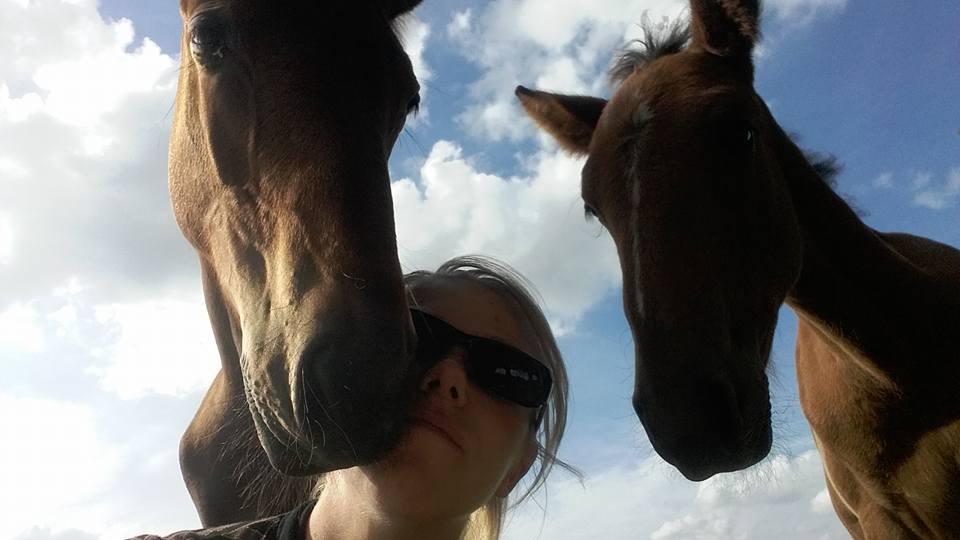 poulinage, élevage trotteur, equi'forme massage chevaux et bien-être équin massage sportif équin soins énergétique shiatsu acupression stretching pour chevaux massage pour chevaux préparation sportive du cheval et détente physique et émotionnelle, tendinite, alodis care, huiles essentielles pour chevaux, reverdy, esprit horse, ravene