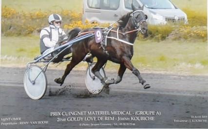 élevage de chevaux de course Pas-de-Calais